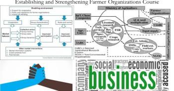 Establishing and Strengthening Farmer Organizations Course